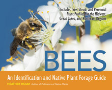 Bees: An Identification and Native Plant Forage Guide Book